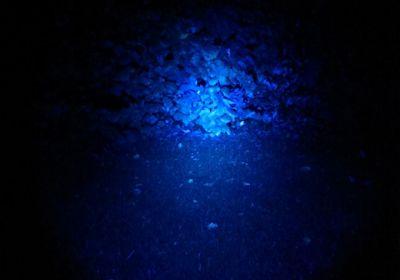 Schweißfinder Filterglas Farbe blau  für Maxx 5 LED Power Lampe